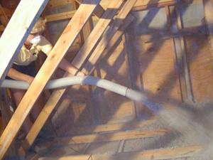 Eco Wise Pest Control Attic Restoration Amp Insulation